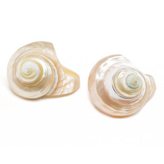 Кольцо-Ракушка Snail Cream